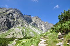 Mountains - High Tatras. Mountains in the summer, the High Tatras, Slovakia Stock Photo
