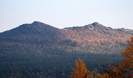 Mountains on the Horizon in Deep Taiga Forest Stock Photo