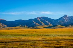 Landscape by Song Kul lake. Mountains and horses around Song Kul lake, Kyrgyzstan Stock Image