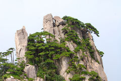 Mountains huangshan Stock Photo