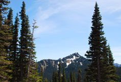 Mountains of Hurricane Ridge Royalty Free Stock Photo