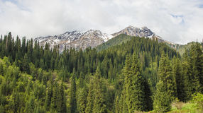 Mountains with ice peaks and cloudy sky, Central Tien-Shan, Kaza Stock Images