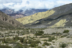 Mountains IV. Mountainsides of Jujuy, Argentina lined with cacti and sand Royalty Free Stock Images