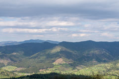 The mountains. Ivano-Frankivsk Carpathian Mountains. May landscape Stock Image