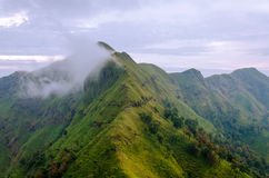 Mountains and jungle with mist in foggy weather in Thailand Royalty Free Stock Photography