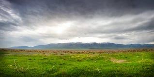 Mountains in Kazakhstan Royalty Free Stock Photos