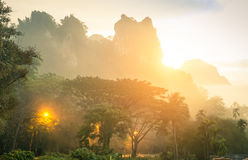 Mountains in Khao Sok national park in Thailand. Thick wild vegetation and mountains in Khao Sok national park forest at sunset - Wanderlust travel lifestyle Stock Photography