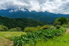 Mountains of Kiso Valley in Gifu prefecture, Japan. Forest mountains and hills on overcast day. Kiso Valley in Gifu prefecture, Japan Royalty Free Stock Image