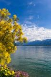 Mountains and lake Geneva Stock Photos