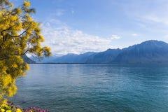 Mountains and lake Geneva Stock Photo