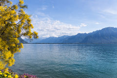 Mountains and lake Geneva. From the Embankment in Montreux. Switzerland Royalty Free Stock Photos
