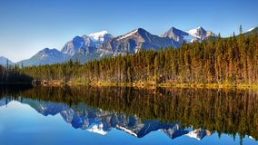 Mountains Lake Reflection Morning, Banff National Park, Canada. Morning mountains reflection in lake.  Canadian Rockies. Banff National Park. Alberta, Canada Royalty Free Stock Photos