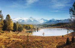 Altai Mountains landscape Stock Photography