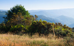 Mountains landscape of Galicia Royalty Free Stock Photography