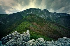 Giewont mountains in Tatry. Mountains Landscape. Giewont mountains in Tatry, Poland. Nature in wilderness royalty free stock photography