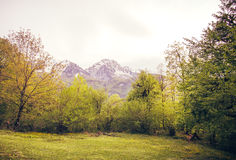 Mountains Landscape with green alpine valley Royalty Free Stock Image