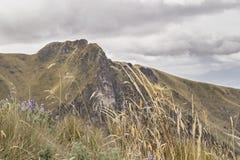 Mountains Landscape Quito Ecuador Stock Image