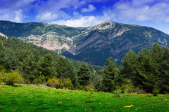 Mountains landscape in summer day Royalty Free Stock Photo