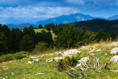 Mountains landscape in summer day. Pyrenees, Spain Stock Image