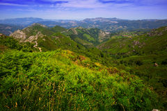Mountains landscape in summer. Picos de Europa Royalty Free Stock Image