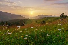 Mountains landscape at summer sunrise. Stock Photography