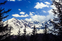 Mountains landscape, sunny day in Tatras Stock Images