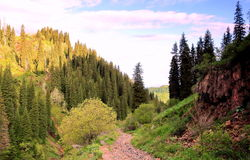 Mountains landscape. In the mountains of Trans-Ili Alatau, Kimisarovsoe gorge Royalty Free Stock Photo