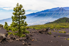 Mountains landscape volcanic island Stock Images