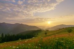 Mountains landscape at summer sunrise. Stock Images