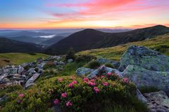 Mountains landscapes. Scenery of sunrise with beautiful colorful sky. Lawn with rhododendron flowers. Mountains landscapes. Scenery of sunrise with beautiful royalty free stock images