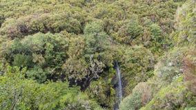 Mountains on Madeira Island. royalty free stock photo