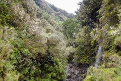 Mountains on Madeira Island. stock photos