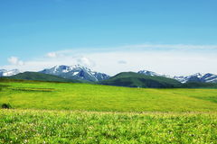 Mountains meadow Royalty Free Stock Photo