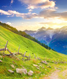 Mountains and meadow Stock Photo