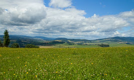 Mountains. Meadow with a background of mountains Royalty Free Stock Photography