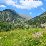 Mountains, meadows and blue sky Royalty Free Stock Photo