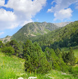 mountains, meadows and blue sky Stock Photography