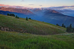 Mountains and meadows at sunset, Olympic National  Royalty Free Stock Images