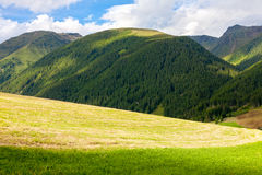 Mountains and meadows Stock Photography