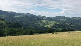 Mountains and meadows of Serbia stock video