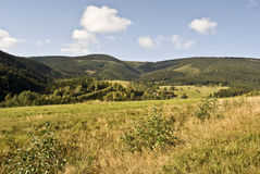 mountain meadow with trees and Ktalicky Sneznik mountain range on the background Stock Photography