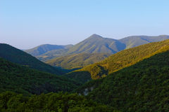 Mountains in the Morning. Beautiful panorama of tree covered mountains taken in the bright summer morning royalty free stock photos