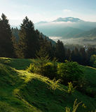 Mountains in morning fog Royalty Free Stock Photography