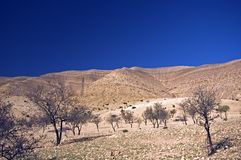 Mountains, Morocco Royalty Free Stock Photography