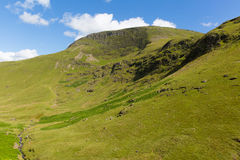 Mountains by Moss Force waterfall Lake District National Park Cumbria uk on a beautiful blue sky summer day Royalty Free Stock Images