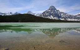 Mountains with Mount Chephren on Waterfowl Lake. Banff National Park, Alberta, Canada royalty free stock image