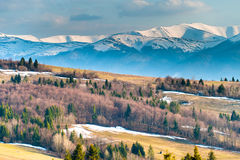 Mountains. Mountain Carpathian landscape in spring with snowy peaks Royalty Free Stock Photo