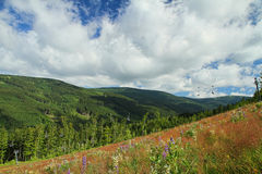 Mountains. Mountain meadow with mountains and chairlift Royalty Free Stock Photo