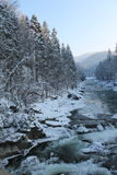 Mountains, a mountain river in winter Royalty Free Stock Images