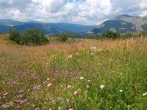 Mountains. Mounument high in the mountains royalty free stock photo